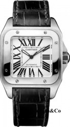 Cartier W20106X8 Medium Automatic