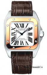 Cartier W20107X7 Medium Automatic
