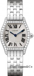Cartier WA501011 Small Manual