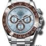 Rolex Platinum Model 116506IB