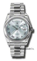 Rolex Platinum Model 118206GLARP